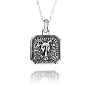 Sterling Silver Capricorn Zodiac Necklace - inscripture - personalised jewellery for him